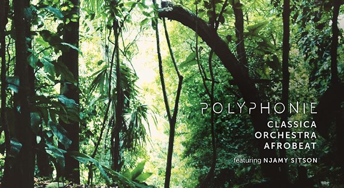 foto-cover-web-polyphonie cut